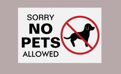 Please no pets on the property during fall fest – Thank you!